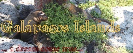 galapagos_blog